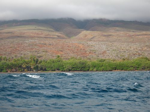 Maui Channel Swim 019